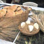 alimentos trigo